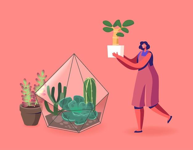 원예, 꽃 심기 취미. 테라리움 그림에서 여자 성장 식물