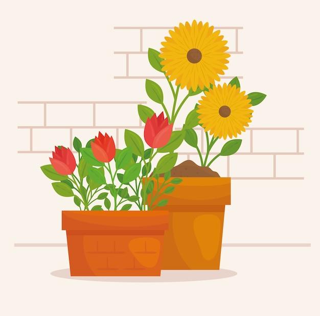 鉢植え、植木、自然の葉で花をガーデニング