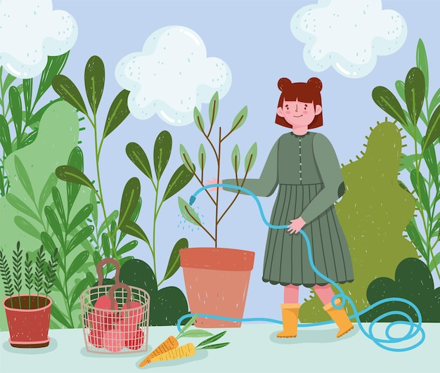 Gardening, girl spraying water to a plant with hose, carrtos tomatoes harvest  illustration