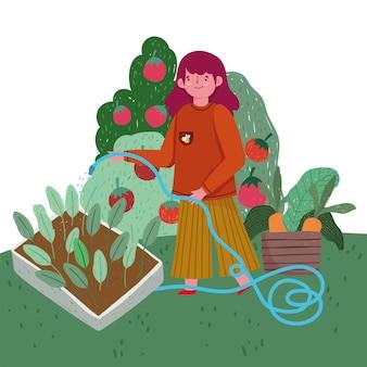 원예 소녀 살포 물 식물 야채 신선한 그림