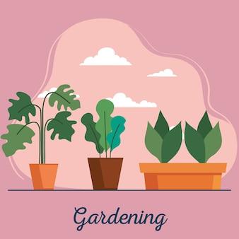 園芸植物は、鉢や雲のデザイン、庭の植栽、自然のテーマを取り入れています
