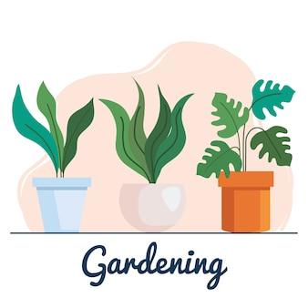 園芸植物insdeポットセットデザイン、庭の植栽と自然のテーマ