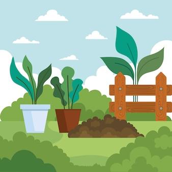 Садовые растения в горшках и дизайн земли, садовые насаждения и природа