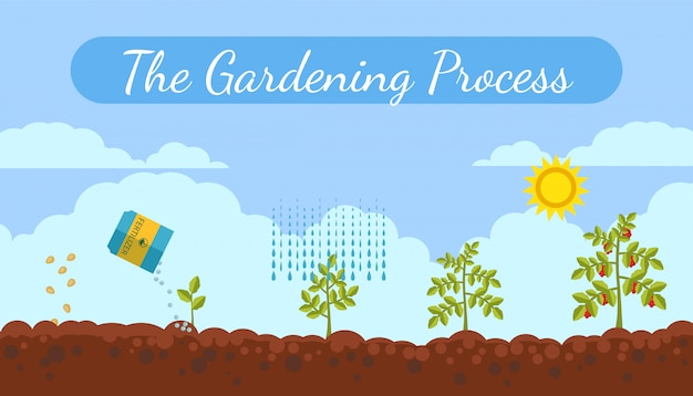 Gardening process flat vector banner with text