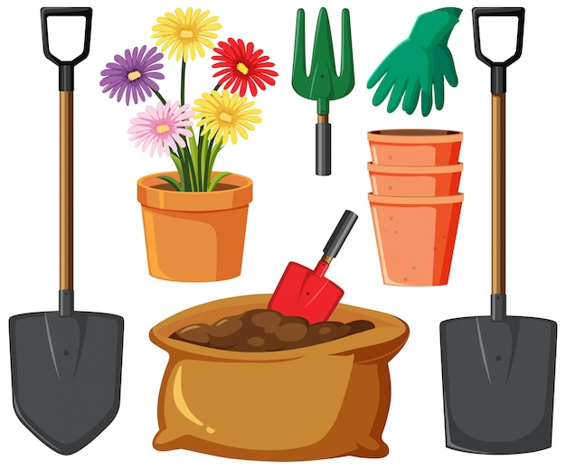Gardening set with flowers and tools on white background