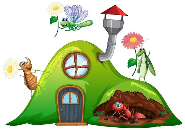 家に虫がいる園芸テーマ