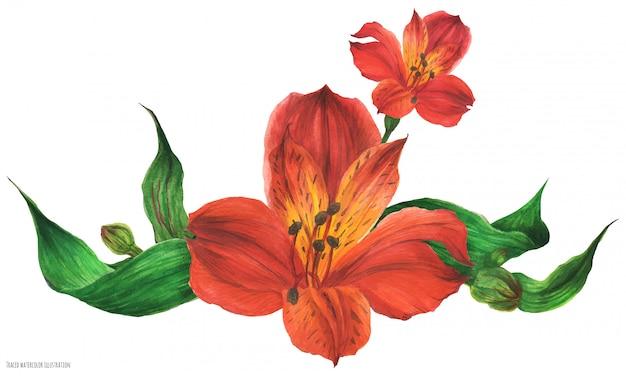 赤いペルーのユリの花とガーランドブーケ