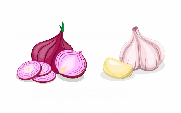 Garlic and red union in sliced and whole collection icon set in cartoon illustration vector