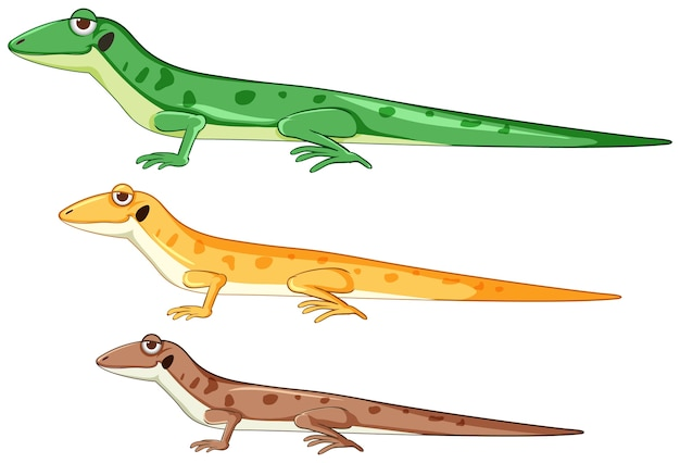 Geckos or lizards in different color cartoon style isolated