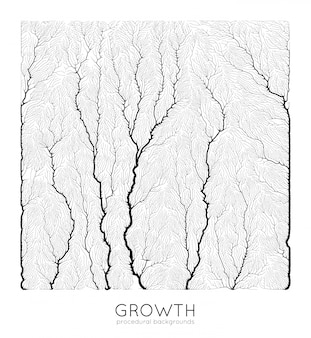 Generative branch growth pattern