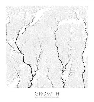 Generative branch growth pattern