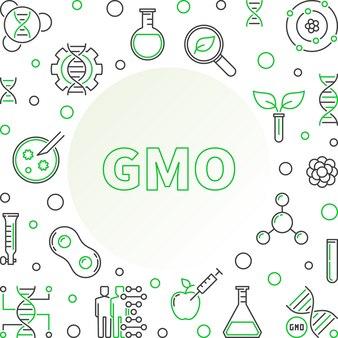 Genetically modified ganism linear   frame