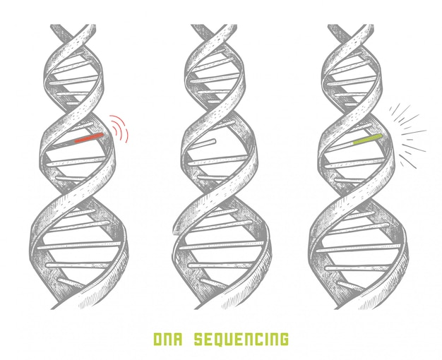 Genome sequencing