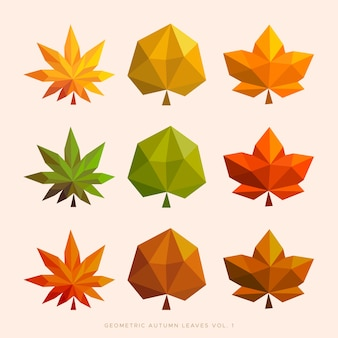 Geometric autumn leaves