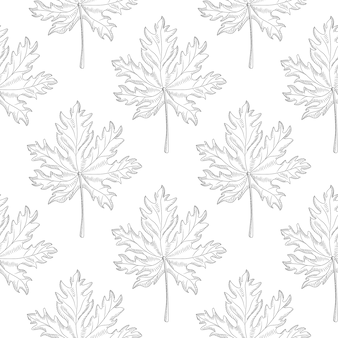 白い背景の幾何学的なカエデの葉のシームレスなパターン。モノクロの葉ビンテージ壁紙。刻まれたスタイル。