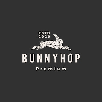 Geometric rabbit bunny hop hipster vintage logo  icon illustration
