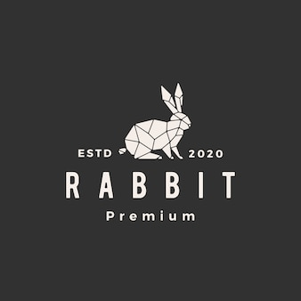 Geometric rabbit hare bunny hipster vintage logo  icon illustration