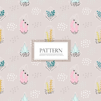 Geometric terrariums with succulents seamless  pattern