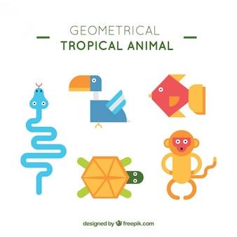 기하학적 야생 동물 모음
