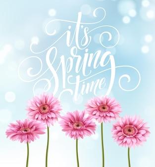 Gerbera 꽃 배경 및 봄 글자. 삽화