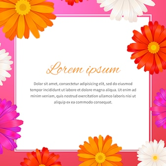 Gerbera flowers and text space
