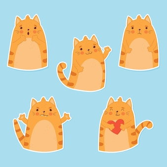 Ginger cat with different emotions
