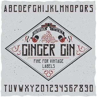 Ginger gin typeface poster with decoration on simple label design illustration
