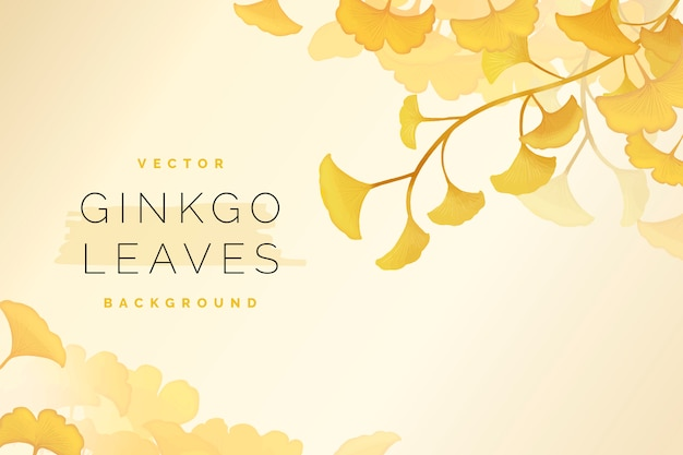 Gingko leaf background