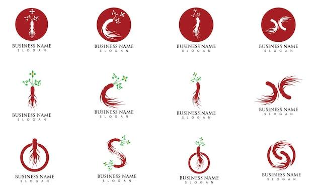 Ginseng logo and symbol vector image