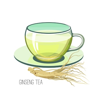 Женьшень чай. концепция пищевой медицины травы здоровья на белой предпосылке. иллюстрация