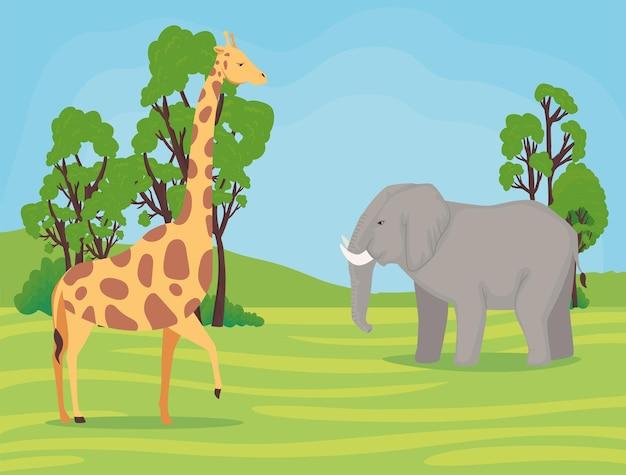 キャンプで野生のキリンと象のアフリカの動物