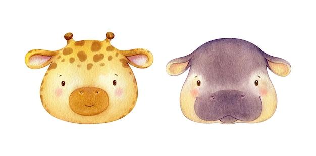 キリンとカバの水彩画の動物。キャラクターの頭のイラスト。