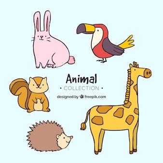 기린과 다른 예쁜 손으로 그린 동물
