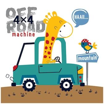 Giraffe on the car funny animal cartoon