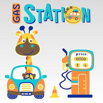 Giraffe on car in gas station