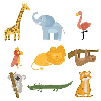 Giraffe, elephant, flamingo, parrot, lion, sloth, koala bear, crocodile and tiger.
