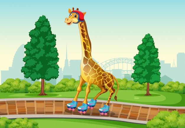 Жираф играет на роликах в парке