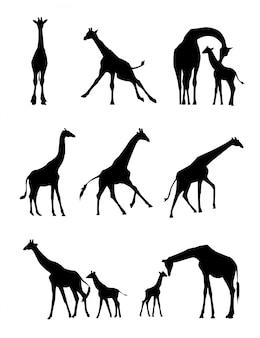 Жираф силуэт