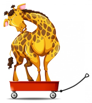 Giraffe standing on small wagon