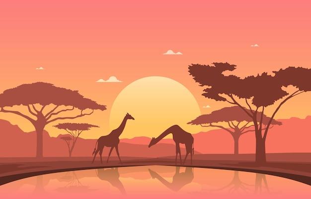 Жираф закат оазис животных саванна пейзаж дикой природы африки иллюстрация