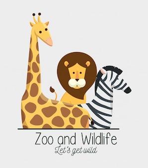 Giraffe with lion and zebra animals in the safari reserve