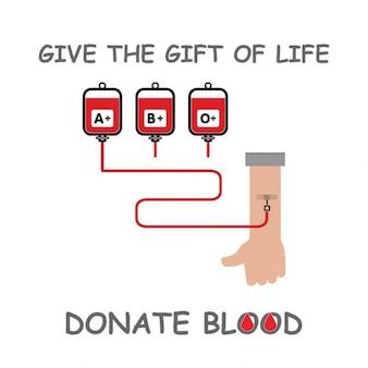 献血をします