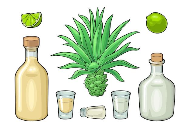 Стакан и бутылка текилы. кактус голубой агавы, соль и лайм. набор рисованной эскиз алкогольных коктейлей. изолированные на белом фоне