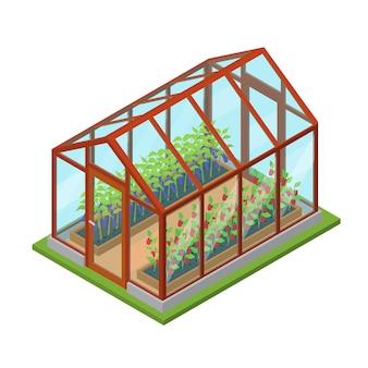 농장 재배 농업을 위한 꽃과 식물 아이소메트릭 뷰 건물이 있는 유리 온실. 벡터 일러스트 레이 션
