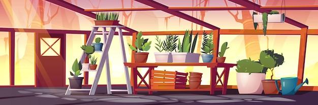 식물, 나무 및 꽃이있는 유리 온실. 재배 및 성장 정원 식물을위한 빈 뜨거운 집의 벡터 만화 인테리어