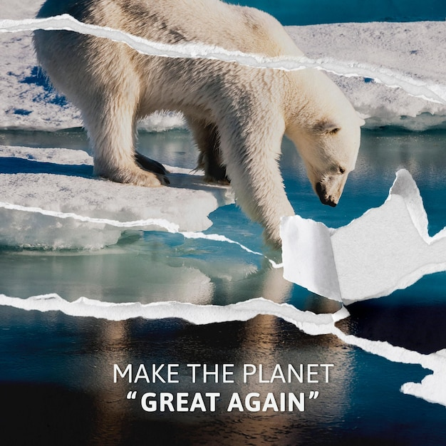 Global warming awareness template with ripped polar bear background