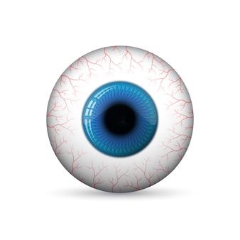 Glossy 3d eye.   illustration.