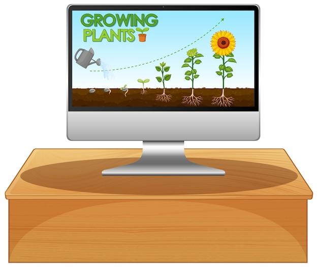 コンピューターの画面上で輝く植物