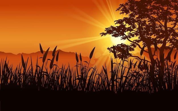 나무와 잔디와 빛나는 일몰