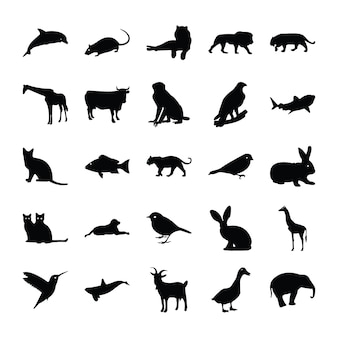 Glyph pictograms of animals